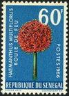Asenegal1966