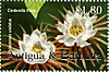 Antiguabarbuda2002