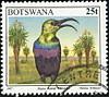 Botswana1997