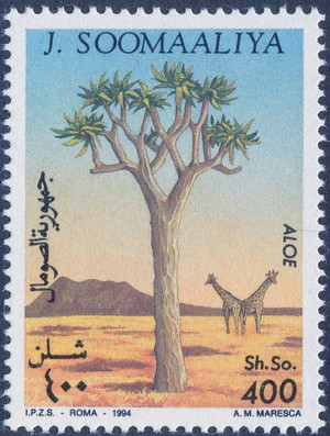 Somalia1994s