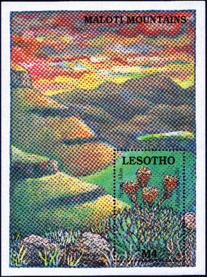 Lesotho1989_aloe