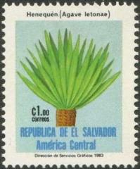 Aelsalvador1983