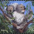 182 Koala