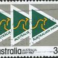 213 Kangaroo