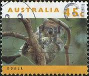 179 Koala