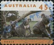177 Koala