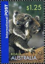 183 Koala