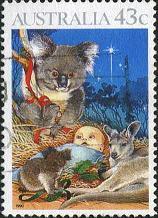 176 Koala