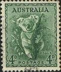 170 Koala