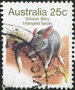 112 Greater bilby