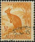 202 Kangaroo