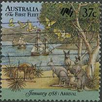 214 Kangaroo