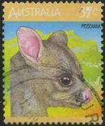 143 Possum