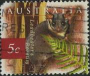 145 Leadbeater's possum