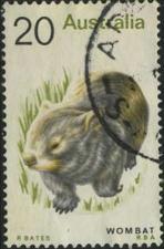 160 Wombat