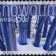 Eucalyptus pauciflorus
