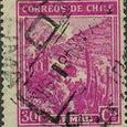 Cactus-Chile 1938
