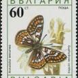 Cactus-Bulgaria 1990