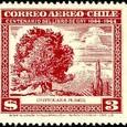 Cactus-Chile 1948