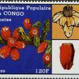 Opuntia leptocaulis 1989