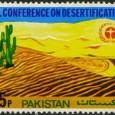 Cactus-Pakistan 1977