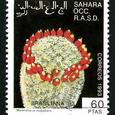 Mammillaria magallani 1993