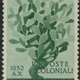 Opuntia leucotricha 1932