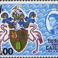 Melocactus intortus 1969