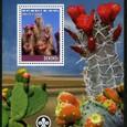 Cactus-Benin 2008