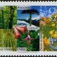 Eriosyce chilensis 2003