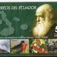 Cactus-Ecuador 2009
