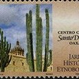 Cactus-Mexico 1998
