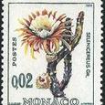 Selenicereus grandiflorus 1964