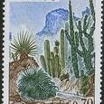 Cactus-Monaco 1980