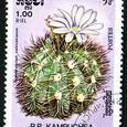 Gymnocalycium vainicekianum 1986