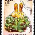 Discocactus silichromus 1986