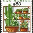 Cactus-San Marino 1992