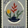 Cactus-Suriname 1959