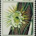 Cactus-Suriname 1985