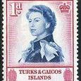 Melocactus intortus 1957