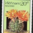 Cactus-Vietnam 1987
