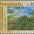 Cactus-Venezuela 1995