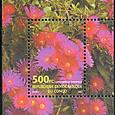 Lampranthus coccineus 2001