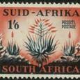 Aloe 1953