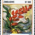 Aloe ballii 2004