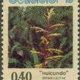 Bromeliaceae cactacceae 1975