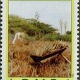 Aloe vera 1988