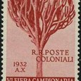 Euphorbia tirucalli 1932