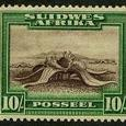 Welwitschia mirabilis 1931