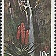 Aloe 1979